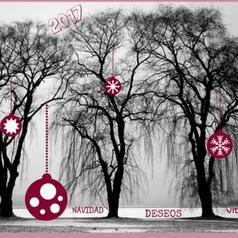 Un Árbol de los Deseos en el programa de Animación Turística