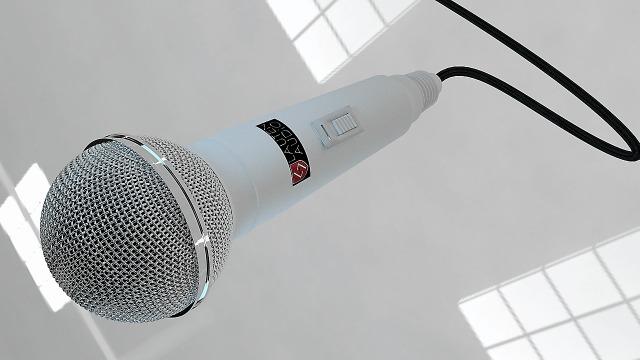 El micrófono en animación turística