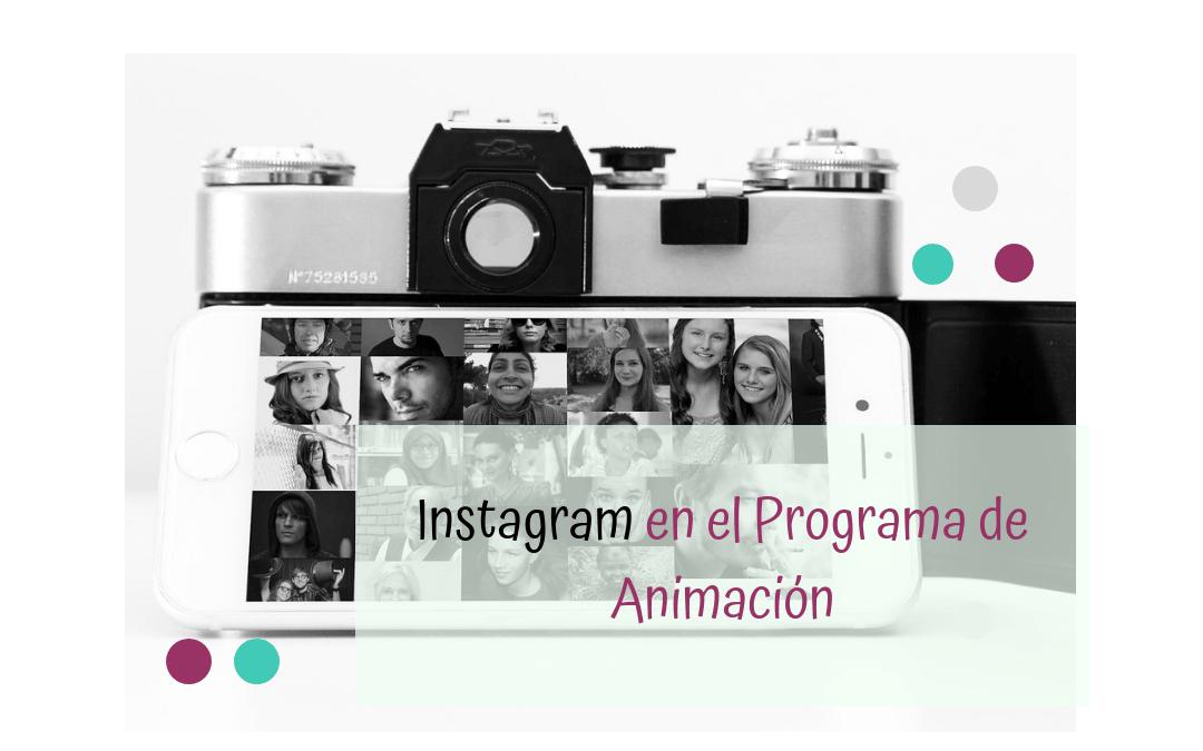 ¿Cómo introducir Instagram en el programa de animación?